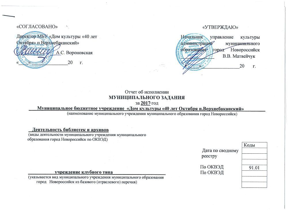 Отчет об исполнении муниципального задания за 2017 год -1